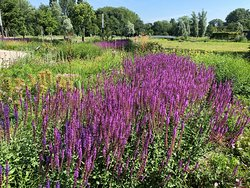Beatrixpark (7)