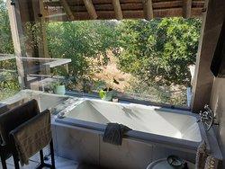 Room view, bath