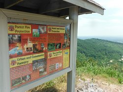 Rendezvous Mountain Educational State Forest