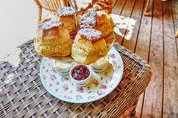 Horner Tea Gardens - cream tea