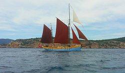 The Andrea Jensen Boat Trip