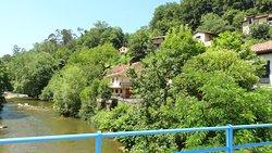 Las casas de Antrialgo estas mimetizadas en un verde bosque de Rivera .