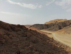 Gita nel deserto..