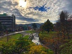 University of Otago Autumn days