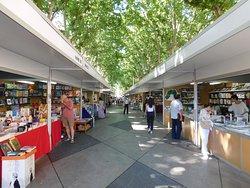 Temporary book fair in central area