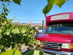 Breakaway Tours Wine and Events
