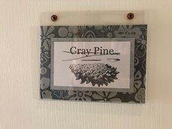 Gray Pine door label