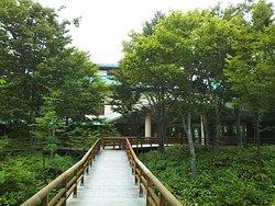 Shirakami Sanchi Visitor Center