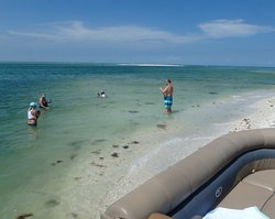 Some of our guests taking a quick cooldown. #docjimmyscureall #marcoisland #naplesflorida #naplesfl #ecotourism #boat #boattour #cooldown