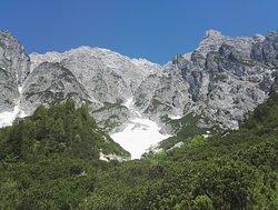der Birnbach Gletscher am oberen Wegesrand