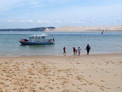 Retour à bord d'une balade sur le Banc d'Arguin, face à la dune du Pilat.