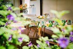 Garden - studio