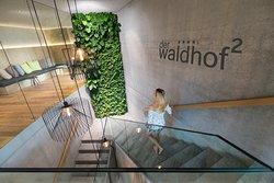 Der neue SPA-Bereich besticht durch modernes Design,natürlichen Materialien und vertikalen Gärten.