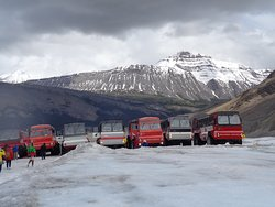 Ice Explorers on the Columbia Icefields (lunch & admission included plus you skip the long line!)