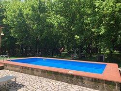 Ottima cucina, spazio verde e piscina