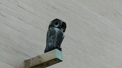 The owl on his plinth on the outside of the museum