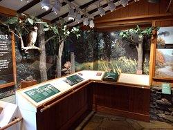 Small exhibit area in the visitor's center.