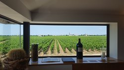 View from the tasting room.