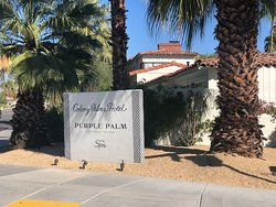 Love the Colony Palms!