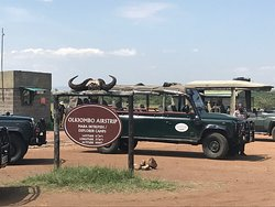 We landed at Olkiombo Airstrip where we were greeted by John Mark, who then drove us too Ilkiliani Camp site