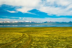 Lake Song-Kul. Kyrgyzstan