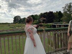 Magical wedding venue!