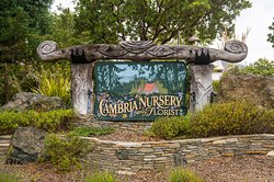 Cambria Nursery and Florist