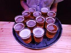 San jose craft beer tour and food