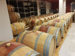 Grandes vinos y excelente visita