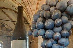 Italian Wine Tours (Alba office)