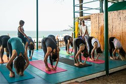 Our 300 hour Yoga Teacher Training in Vinyasa Flow and Adjustments an intensive course that presents a fusion of traditional and contemporary thinking in a fun and progressive environment. If you would like to complete an advanced Yoga Teacher Training and enjoy some quality beach time in Goa, this is the course for you.