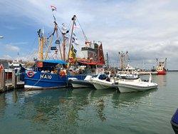Bij het vissersteiger, vis verkoopvoorwaarden