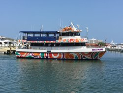 Fiesta Cruises of Miami