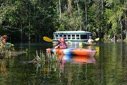 Silver Springs Kayaking LLC