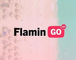 365 Flamingo
