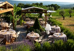 Les Vignes & Son Jardin