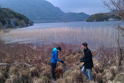 Killarney Guided Walks