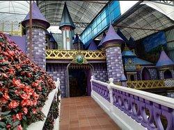 The Lavender Gardens