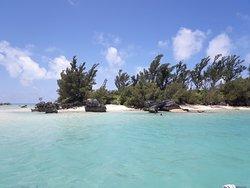 SeaSplash Bermuda Ltd