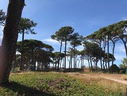 parking et sentier vers plage Calvi
