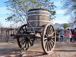 História do vinho em Mendoza