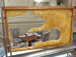 Tuoretta hunajaa aamupalalla.
