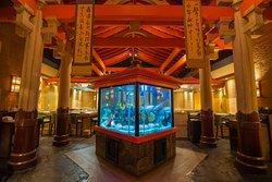 Shogun Aquarium