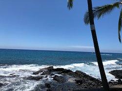ハワイを感じたお店。