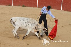 Bullfighting experiences Madrid