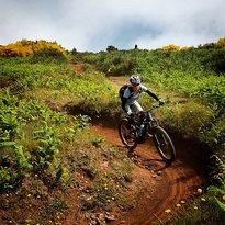 E-Bike Madeira