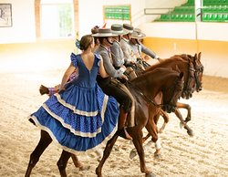 Ritmo a Caballo & Andalusian Night