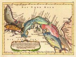 Abundancia de Peces . Pintura de Pascual Rudas para @weil_art  sobre un mapa de Bellin de 1754 #Panama #Panama500 #500anos #500años #mapa  #peces #arte #art #canaldepanama