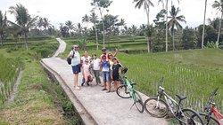 Cycling down hill start from kintamani
