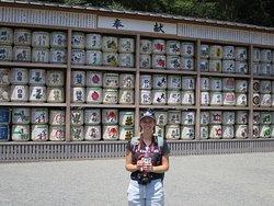 Tsurugaoka Hachiman-Gu (Shinto Shrine) Kamakura Tour